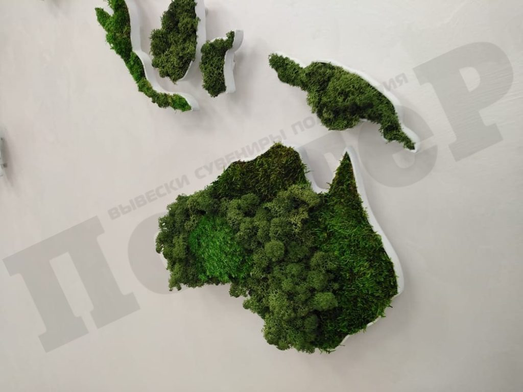 Стабилизированный мох в рекламе